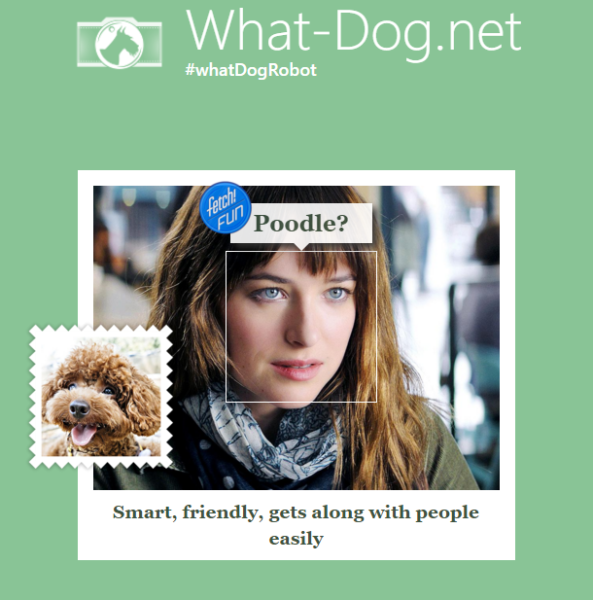 what dog anastasia steele