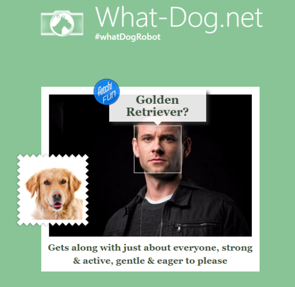 what dog jack hyde